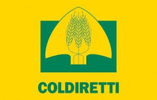 Coldiretti Marche, un'azienda su quattro ancora al lavoro per garantire il cibo nonostante la quarantena