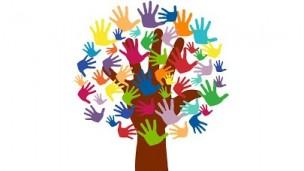 Terzo settore, aperta la seconda fase per presentare le richieste di contributo a sostegno delle attività